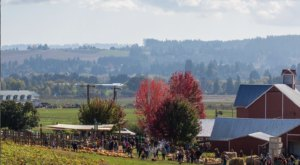 The Apple Butter Festival At Oregon Heritage Farms In Oregon Where You'll Have Loads Of Delicious Fun