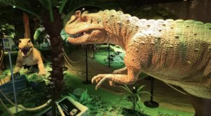 Travel Back To The Age Of Dinosaurs At Jurassic Gardens Indoor Dinosaur Park In Illinois