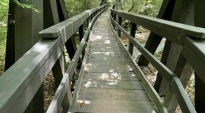 A Mysterious Woodland Trail In Virginia Will Take You To The Original Pyrite Mine Ruins