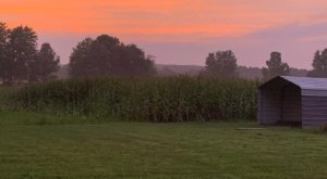 Sip Wine As You Make Your Way Through This Meandering Ohio Corn Maze
