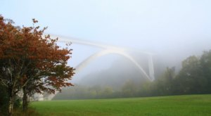 The Remarkable Bridge Near Nashville That Everyone Should Visit At Least Once