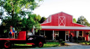 Pick Your Own Pumpkins And Celebrate Fall This Year At Lucky Ladd Farms Near Nashville