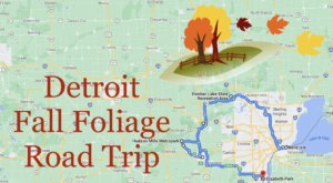You'll Want To Take This Gorgeous Fall Foliage Road Trip Around Detroit This Year