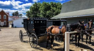 The Tiny Amish Town In Michigan That's The Perfect Day Trip Destination