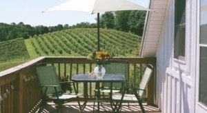 This Stunning Ohio Airbnb Comes With Its Own Private Views Of A Gorgeous Vineyard