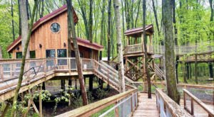 There's A Treehouse Village Near Detroit Where You Can Spend The Night