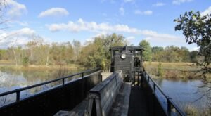 Take This Fall Foliage Train Ride Near Detroit For A One-Of-A-Kind Experience