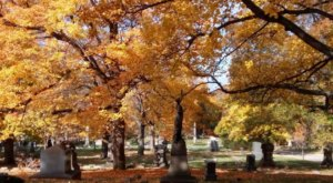 The Gorgeous 2.9-Mile Hike Near City In Cleveland's Lake View Cemetery That Will Lead You Past A River And A Lake