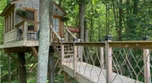 Sleep Among Towering Oaks And Pines At This Tree House In Rhode Island