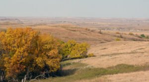 When And Where To Expect North Dakota's Fall Foliage To Peak This Year