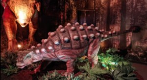 Jurassic Giants Is A Unique Exhibit In Connecticut Where Dinosaurs Come To Life