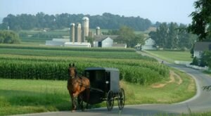 The Homemade Goods From This Amish Store In Wisconsin Are Worth The Drive To Get Them