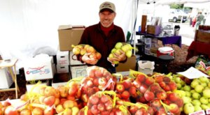 Don't Miss The Biggest Apple Festival In Colorado This Year, Applefest