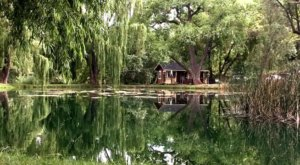 Enjoy Your Own Private Pond When You Spend The Night In This Quaint Arizona Cottage