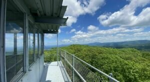 The One-Of-A-Kind Trail In Georgia With Fire Tower Views And A Scenic Forest Is Quite The Hike