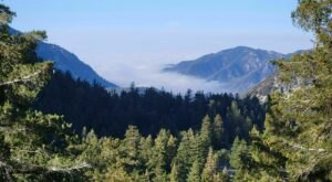 Hike Through Mount Baldy Loop In Southern California For An Incredible Elevated Adventure