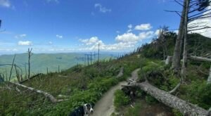 You Have Until The End Of October To Conquer North Carolina's Deep Gap Trail