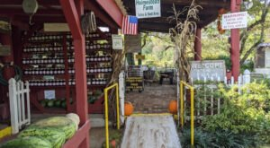 A Visit To Alabama's 95-Acre Holmestead Farm Is A Great Way To Spend A Fall Day