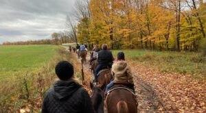 Take A Fall Foliage Trail Ride On Horseback At Stony Lake Stables In Michigan