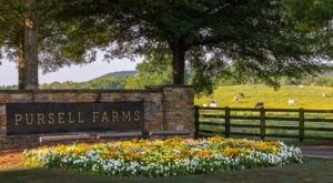 Experience Relaxed Luxury And So Much More At Pursell Farms In Alabama