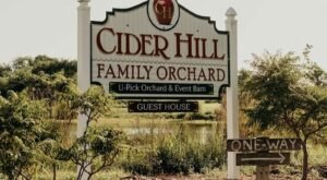 Devour Apple Cider Donuts While Picking Apples At This Family Orchard In Kansas