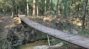 Walk Across A Suspension Bridge On The Sweetleaf Nature Trail and North Boundary Trail Loop In Texas