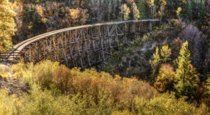 When And Where To Expect New Mexico's Fall Foliage To Peak This Year