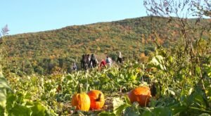 The Great Pumpkin Festival In New Jersey Is A Classic Fall Tradition