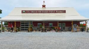 Try The Apple Cider Slushies At T.S. Smith Orchard For A Sweet Treat This Season