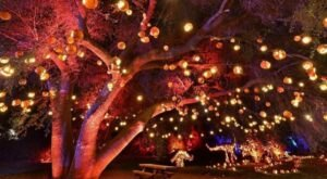 Nights Of The Jack In Southern California Is A Classic Fall Tradition