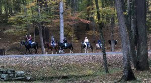 Take A Fall Foliage Trail Ride On Horseback At Hidden Trails Stables In West Virginia