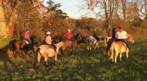 Take A Fall Foliage Trail Ride On Horseback At Stirrup Fun Stables In Connecticut