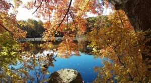 Fall Just Might Be The Best Time To Visit The Connecticut College Arboretum