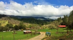 Slow Down With A Getaway To A Farm Along The Eel River In Northern California