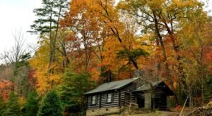 The Cottages At Vogel State Park In Georgia Offer The Perfect Fall Getaway