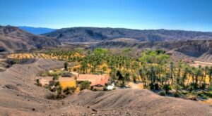 Explore A Hiking Oasis At The Middle-Of-Nowhere China Ranch Date Farm In Southern California