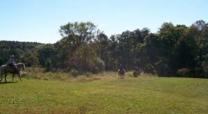 Take A Fall Foliage Trail Ride On Horseback At Bear Branch Horse Campground In Illinois