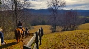 Take A Fall Foliage Trail Ride On Horseback At Brasstown Valley Stables In Georgia