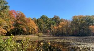 The Connecticut Ghost Town That's Perfect For An Autumn Day Trip