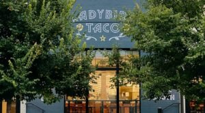 The Mouth-Watering Tacos From Ladybird Taco In Tennessee Are Worthy Of A Pilgrimage