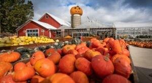 Enjoy Seasonal Fall Treats And Family Fun At Goebbert's Farm In Illinois