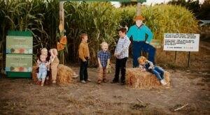 Enjoy Endless Fall Fun And An 11-Acre Maze At Oklahoma Heritage Farms