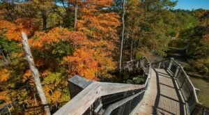 One Of The Best Fall Hikes In Ohio, The Fort Hill Loop Is A Short-And-Sweet Outdoor Adventure