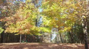 The Awesome Hike That Will Take You To The Most Spectacular Fall Foliage In Mississippi