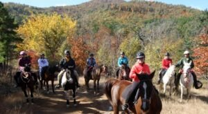 Take A Fall Foliage Trail Ride On Horseback At Daystar Horseback Riding In Arkansas