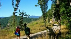 50 Years In The Making, The Corvallis-To-The-Sea-Trail Just Opened – And It's An Epic Oregon Adventure