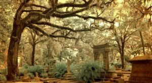 Bonaventure Cemetery In Georgia Is Among The Most Haunted Places In The Nation