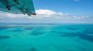 Snorkel Looe Key National Marine Sanctuary In Florida To See Over 150 Marine Animals