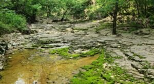 This Trail Leading To A Beautiful Gulf Is Often Called The Little Grand Canyon Of Missouri