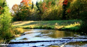 Paddle Past October Colors During This Fall Foliage Canoe Trip In Michigan